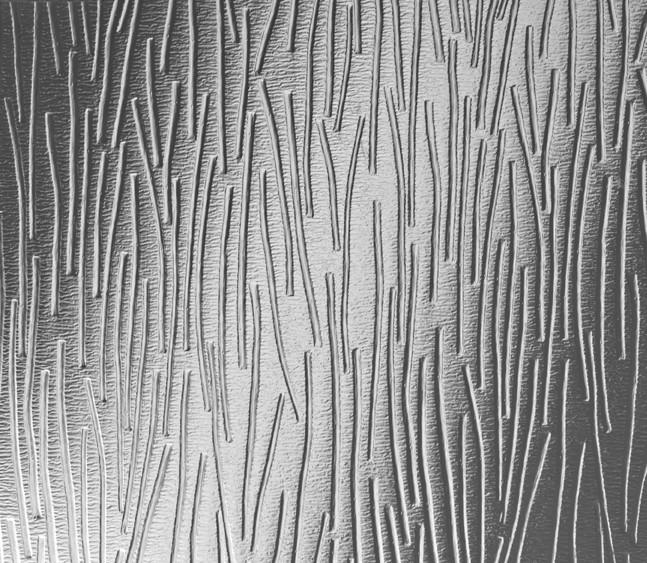 Charcoal-Sticks-Glass