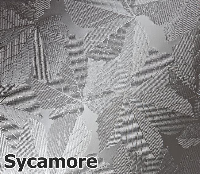 Sycamore-Glass